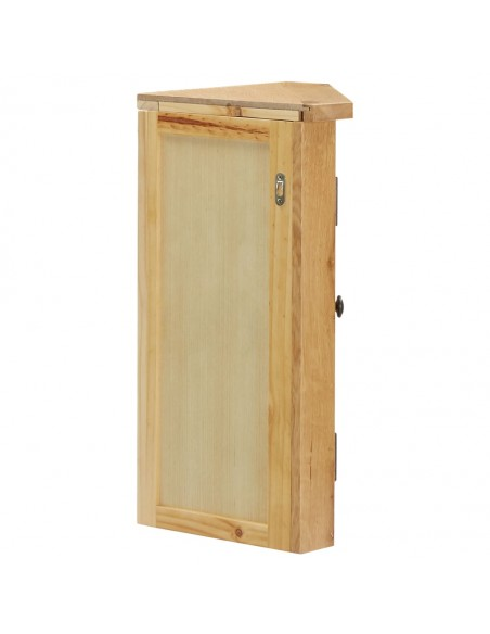 Stogelis durims, 120x60cm, nerūdijantis plienas, stiklas | Langų ir durų markizės | duodu.lt